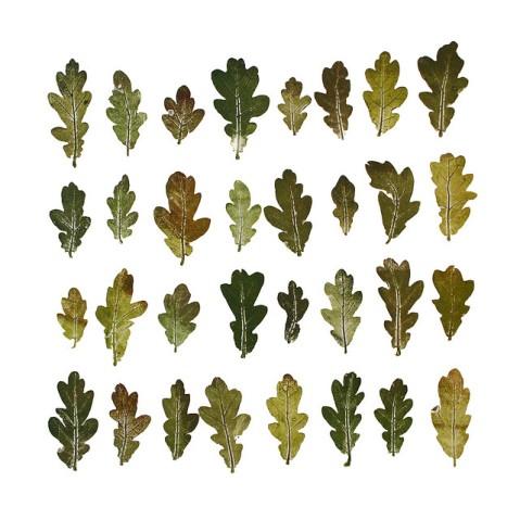 'English Oak' Monoprint by Jacqui Symons