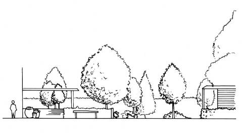 Garden Design Elevation - before colour rendering