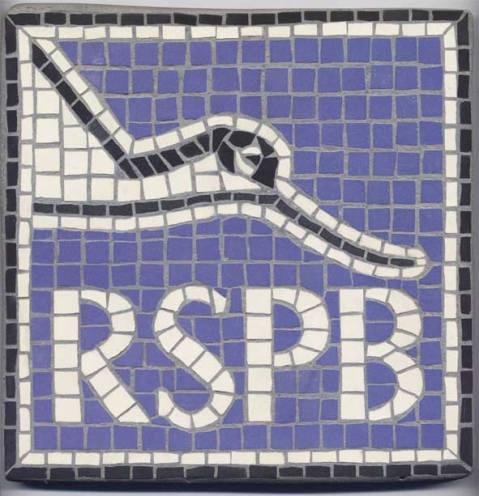 Mosaics - RSPB logo
