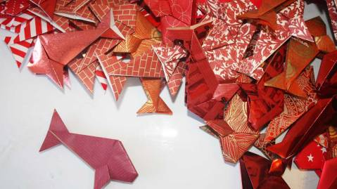 Making the origami fish