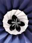 paper-flower-test-03