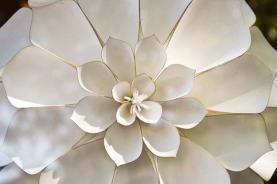 roullier-white-flowers-detail-02